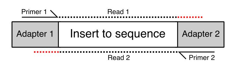 read_through_adapter